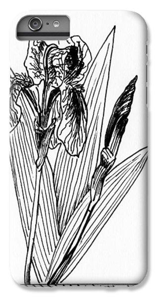 Graphic Iris IPhone 6 Plus Case by Masha Batkova