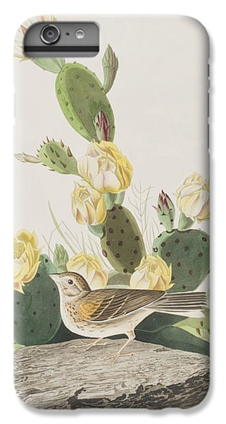 Grass Finch Or Bay Winged Bunting IPhone 6 Plus Case by John James Audubon