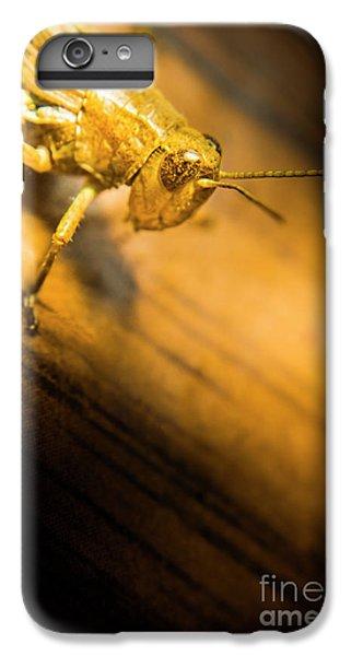 Grasshopper iPhone 6 Plus Case - Grasshopper Under Shining Yellow Light by Jorgo Photography - Wall Art Gallery
