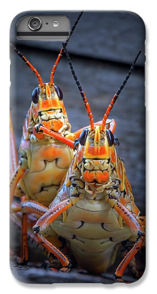 Grasshoppers In Love IPhone 6 Plus Case