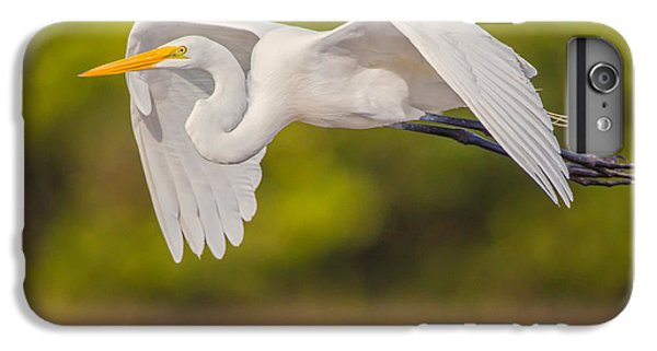 Great Egret Folded Wings IPhone 6 Plus Case