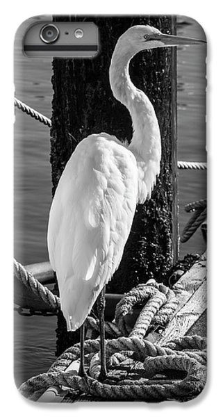 Great White Heron In Black And White IPhone 6 Plus Case by Garry Gay
