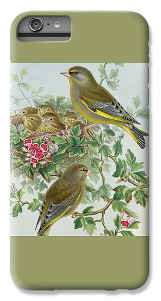 Greenfinch IPhone 6 Plus Case by John Gould