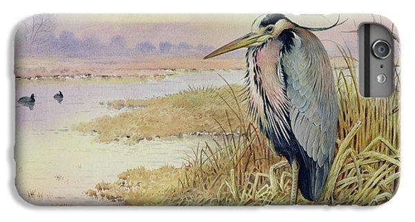 Grey Heron IPhone 6 Plus Case