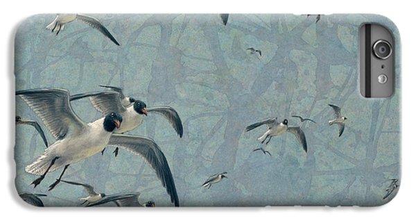 Gulls IPhone 6 Plus Case