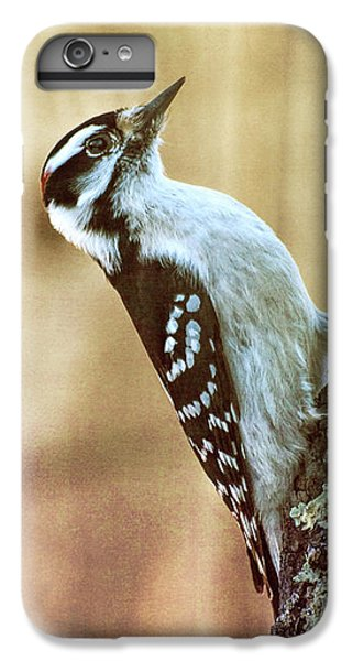 Hairy Woodpecker IPhone 6 Plus Case by Bob Orsillo