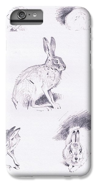 Hare Studies IPhone 6 Plus Case