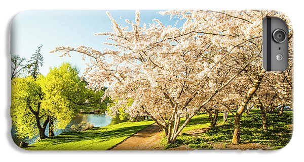 Nature Trail iPhone 6 Plus Case - Hello, I'm In Deloraine by Jorgo Photography - Wall Art Gallery