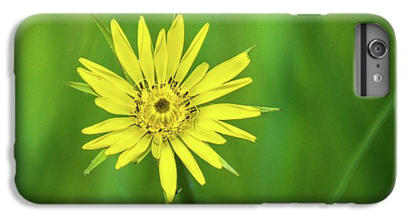 IPhone 6 Plus Case featuring the photograph Hello Wild Yellow by Bill Pevlor