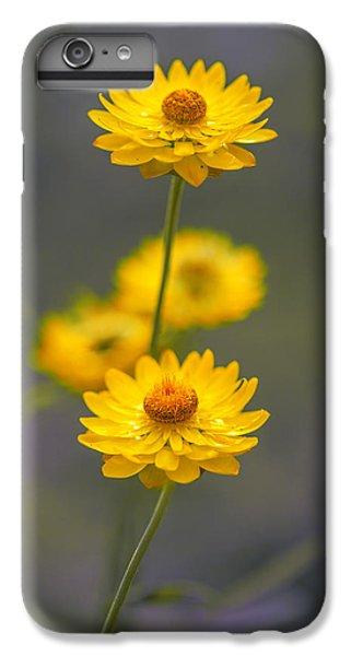 Stork iPhone 6 Plus Case - Hillflowers by Az Jackson