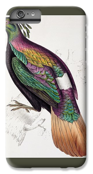 Himalayan Monal Pheasant IPhone 6 Plus Case by John Gould