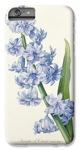 Nature iPhone 6 Plus Case - Hyacinth by Pierre Joseph Redoute