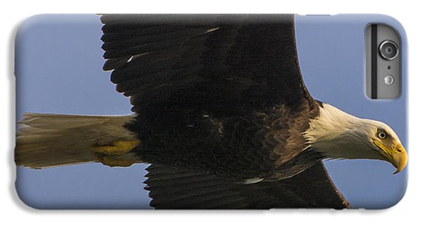 IPhone 6 Plus Case featuring the photograph In Flight by Gary Lengyel