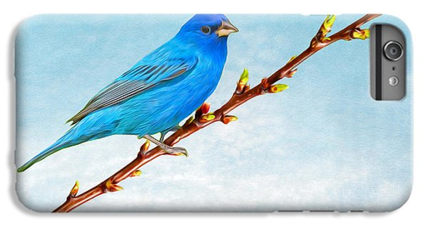 Bunting iPhone 6 Plus Case - Indigo Bunting by Laura D Young