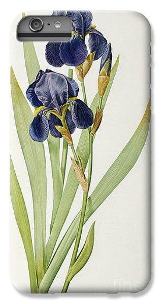 Irises iPhone 6 Plus Case - Iris Germanica by Pierre Joseph Redoute