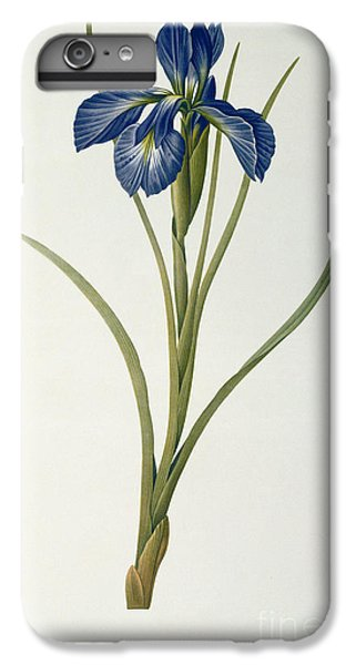 Iris Xyphioides IPhone 6 Plus Case by Pierre Joseph Redoute