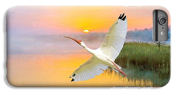 Ibis iPhone 6 Plus Case - Island Ibis by Laura D Young