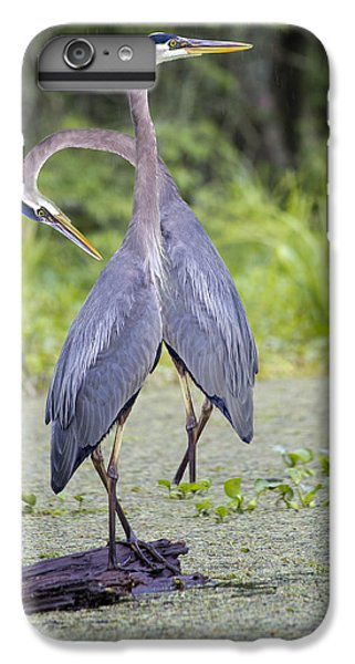 I've Got Your Back IPhone 6 Plus Case by Betsy Knapp