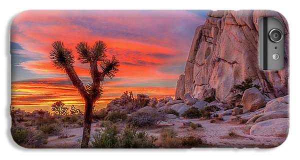 Landscape iPhone 6 Plus Case - Joshua Tree Sunset by Peter Tellone