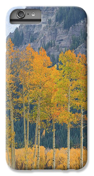 IPhone 6 Plus Case featuring the photograph Just The Ten Of Us by David Chandler