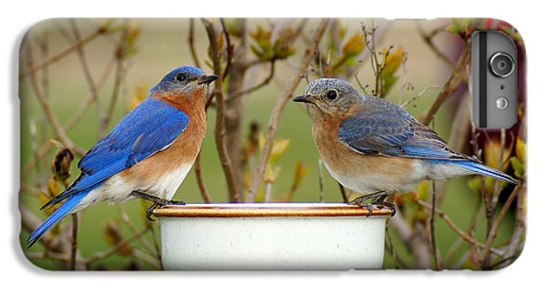 Just The Two Of Us IPhone 6 Plus Case by Bill Pevlor