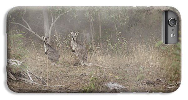 Kangaroos In The Mist IPhone 6 Plus Case by Az Jackson