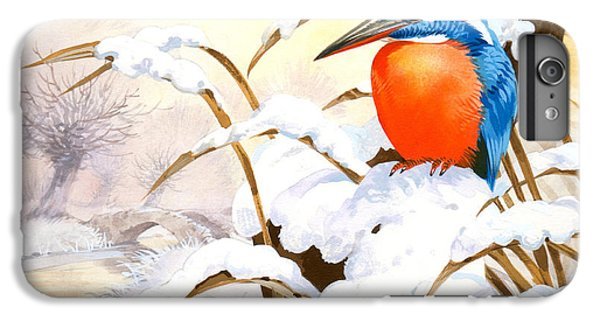 Kingfisher iPhone 6 Plus Case - Kingfisher Plate by John Francis