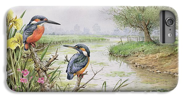 Kingfisher iPhone 6 Plus Case - Kingfishers On The Riverbank by Carl Donner