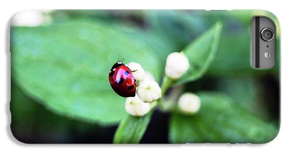 Ladybug IPhone 6 Plus Case