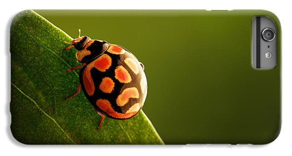 Ladybug  On Green Leaf IPhone 6 Plus Case by Johan Swanepoel