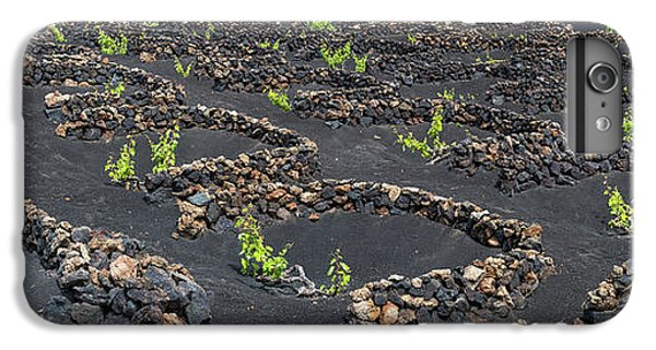 Canary iPhone 6 Plus Case - Lanzarote Vineyards by Delphimages Photo Creations