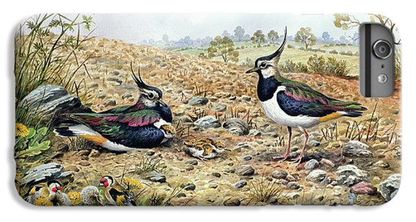 Lapwing Family With Goldfinches IPhone 6 Plus Case by Carl Donner