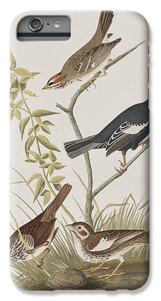 Lark Finch Prairie Finch Brown Song Sparrow IPhone 6 Plus Case