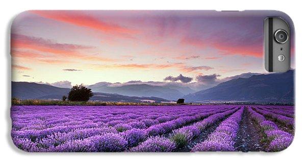 Rural Scenes iPhone 6 Plus Case - Lavender Season by Evgeni Dinev