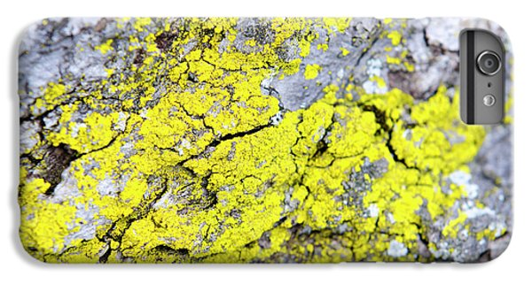 IPhone 6 Plus Case featuring the photograph Lichen Pattern by Christina Rollo