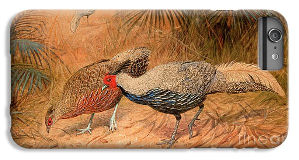 Pheasant iPhone 6 Plus Case - Lineated Kaleege by Joseph Wolf
