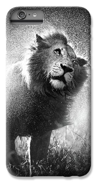 Lion Head iPhone 6 Plus Case - Lion Shaking Off Water by Johan Swanepoel