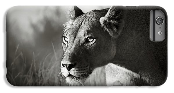 Wildlife iPhone 6 Plus Case - Lioness Stalking by Johan Swanepoel