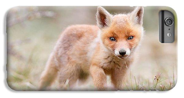 Little Fox Kit, Big World IPhone 6 Plus Case