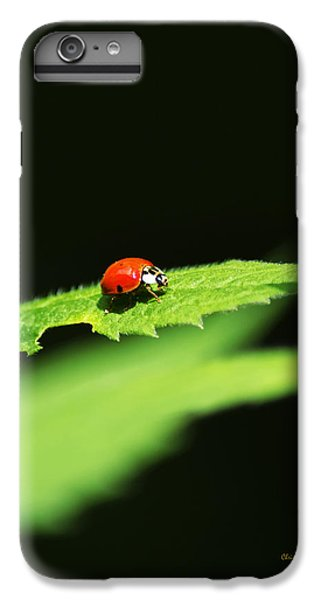 Little Red Ladybug On Green Leaf IPhone 6 Plus Case