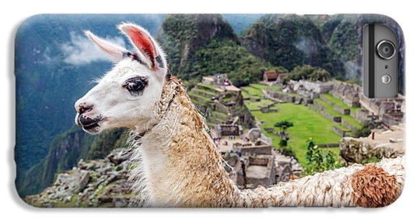 Llama At Machu Picchu IPhone 6 Plus Case