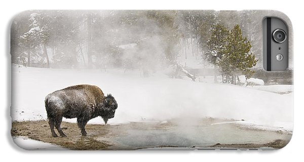 IPhone 6 Plus Case featuring the photograph Bison Keeping Warm by Gary Lengyel