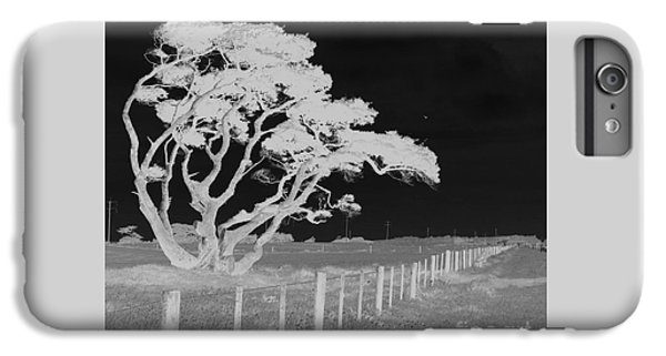 Lone Tree, West Coast IPhone 6 Plus Case by Nareeta Martin