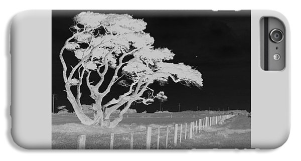 IPhone 6 Plus Case featuring the photograph Lone Tree, West Coast by Nareeta Martin