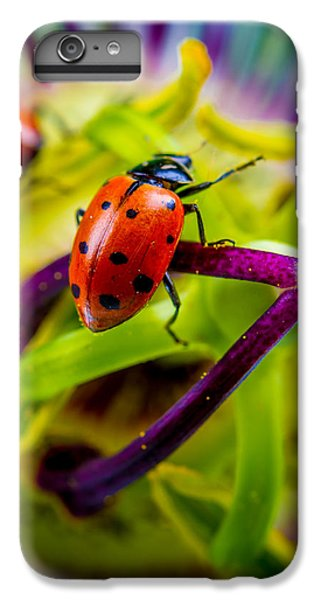 Look At The Colors Over There. IPhone 6 Plus Case by TC Morgan