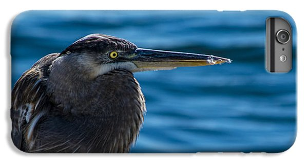 Looking For Lunch IPhone 6 Plus Case by Marvin Spates