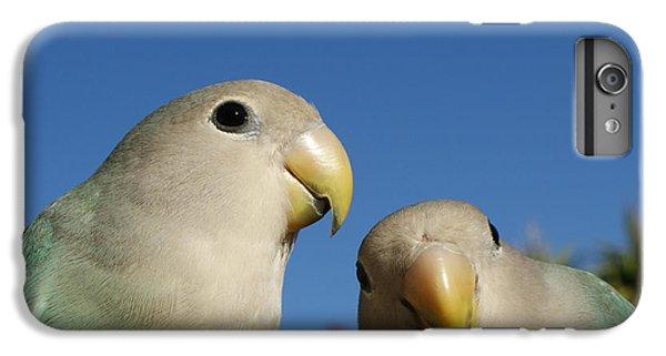 Lovebird iPhone 6 Plus Case - Love Birds 2 by Ernie Echols
