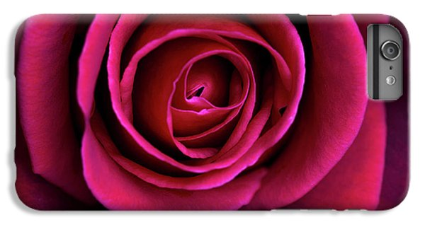 IPhone 6 Plus Case featuring the photograph Love Is A Rose by Linda Lees