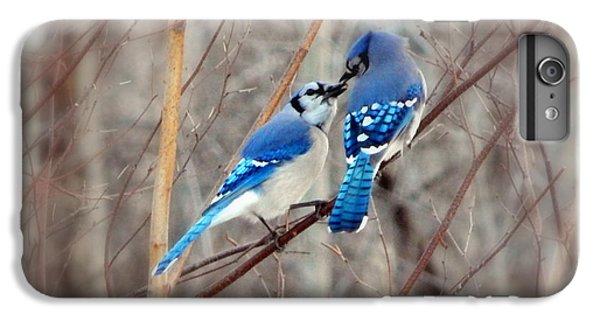 Bluejay iPhone 6 Plus Case - Love Me Tender by Karen Cook