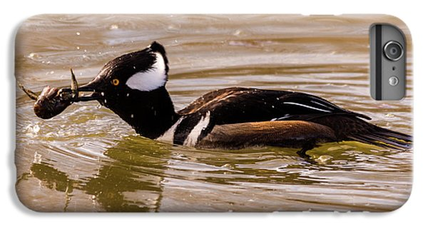 IPhone 6 Plus Case featuring the photograph Lunchtime For The Hooded Merganser by Randy Scherkenbach